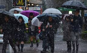 november tokyo hit by first november snow in 54 years