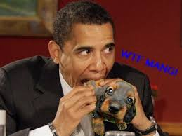 Obama Dog Meme - meme of the week obama eats dog photos