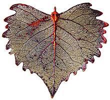still leaves real leaf ornaments tideline gallery