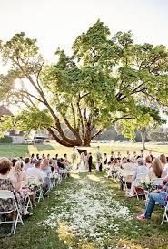 wedding backdrop tree best 25 wedding trees ideas on forest wedding