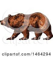 royalty free stock illustrations bears vector tradition sm