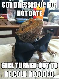Hot Date Meme - got dressed up for hot date girl turned out to be cold blooded