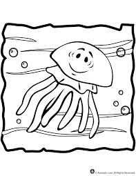 free coloring pages jellyfish top 64 jellyfish coloring pages free coloring page