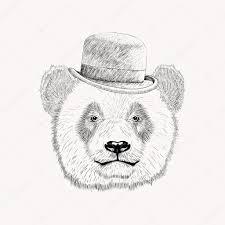 sketch panda face with black bowler hat hand drawn vector illus