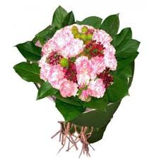 affordable flower delivery affordable flower delivery in festival mall alabang muntinlupa