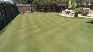 backyard putting green texags