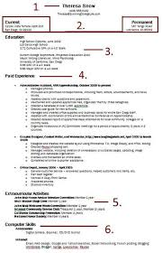 How To Present A Resume How To Build A Resume Resume Cv