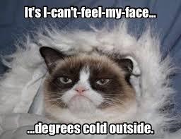 Cold Outside Meme - keltic hashtag on twitter