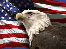 Hd American Flag American Flag Bald Eagle Images Download