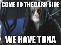 Grumpy Cat Snow Meme - funny star wars pictures jawas mewbacca snow cars 8 photos