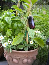 Vertical Vegetable Gardening Ideas Garden Great Mobile Option
