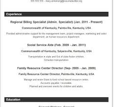 homely inpiration resumes formats 8 resume format resume example