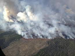 Wildfire Parks Canada by Pine Beetles Not Responsible For Wildfires Research Shows The