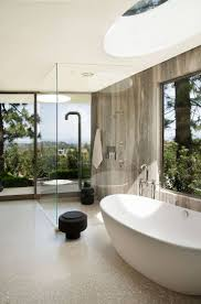 Alegna Bathtubs by 276 Best Home Bathrooms Images On Pinterest Architecture
