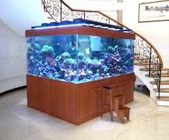 acrylic marine reef tank the best collection of home fish tank