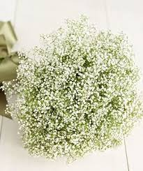 Baby S Breath Bouquets Turn Supermarket Flowers Into Beautiful Bouquets Real Simple