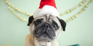 secret santa gift ideas christmas presents for your colleagues