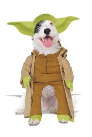 spirit halloween headquarters 87 best pet costumes images on pinterest pet costumes animals
