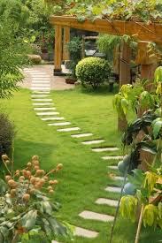 Backyard Landscaping Company Best 25 Japanese Boxwood Ideas On Pinterest Boxwood Tree