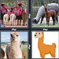 4 pics 1 word answers 5 letters pt 55