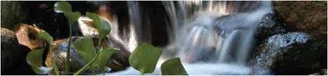 Aquascape Pump Pond Pumps Aeration And Foggers