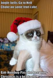 Fruitcake Meme - funny grumpy cat christmas meme pictures photos and images for