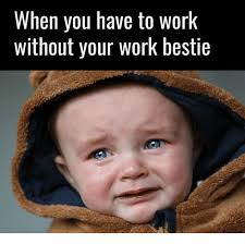 Meme Images Without Text - when you have to work without your work bestie meme on me me