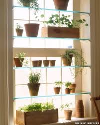 the urban gardener indoor window garden inspiration binder