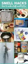 House Hacks by Best 25 Deodorize House Ideas Only On Pinterest House Smell