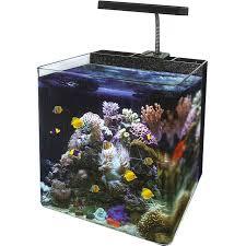 nano marine tank aquariums terrariums pinterest nano reef