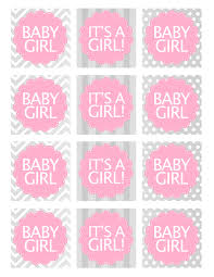 baby girl shower favors baby girl shower free printables how to nest for less