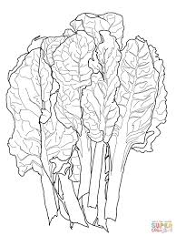 chard leaf coloring page free printable coloring pages