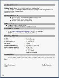 curriculum vitae format for engineering students pdf to jpg resume format pdf for freshers latest professional resume formats