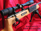 biathlon rifle hot