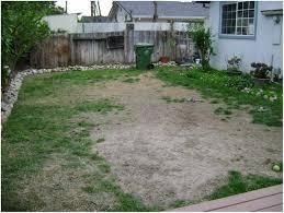 backyard design of small front yard landscaping ideas beautiful