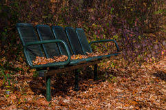 old bench in the autumn park stock photo image 81763851