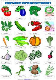 vegetables esl picture dictionary worksheet