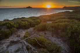 20 Great Dog Walks Around Sydney And Central Coast Australian Coastal Walks U2013 Hiking The World