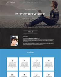 Free Resume Website Templates Lt Profile Onepage U2013 Free One Page Responsive Resume Cv Profile