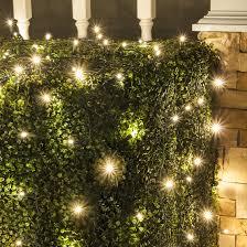 warm white led twinkle lights led net lights 5mm 4 x6 twinkle warm white led net lights green wire