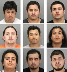 year long probe leads to massive east palo alto gang bust