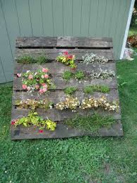 Vertical Succulent Garden Pallet Diy Hanging Garden With Pallets U2013 Craftbnb