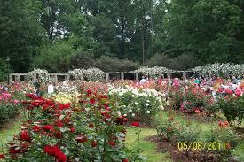 Raleigh Botanical Garden Garden Raleigh Nc Gardens Pinterest Carolina