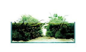 Mountain Aquascape Stones Ada Product Layout Materials