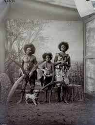 aboriginal people kept in u0027the human zoo u0027 daily mail online