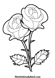 12 roses coloring pages for kids print color craft