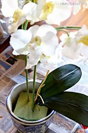 faux orchids the look for less faux orchid arrangement dimples and tangles