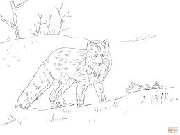 red fox in snow coloring page free printable coloring pages
