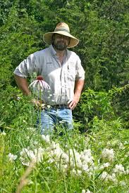 missouri native plant nursery april 1 2017 grow native workshop and plant sale in kirksville