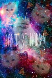 cat universe wallpaper wallpaper space cats don t be normal humor art pinterest